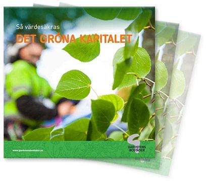 Folder om grön förvaltning i Gårdsten